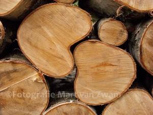Hart-Bomen